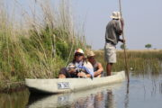 southern tours and safaris